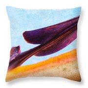 Strelitzia Abstract Throw Pillow