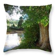 Strength Beside The Stream Throw Pillow