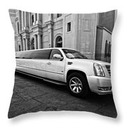Stretch Bw Throw Pillow