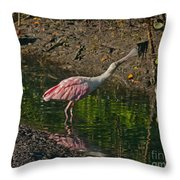 Stretched Out Pink Spoonbill Throw Pillow