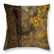 Stretching Out Throw Pillow