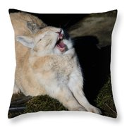 Stretching Rabbit Throw Pillow