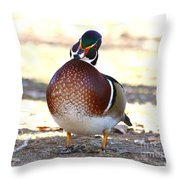 Like This Wood Duck Throw Pillow