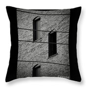 Guitar Frets And Strings Throw Pillow
