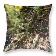 Striped Cammo Throw Pillow