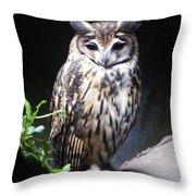 Striped Owl Throw Pillow