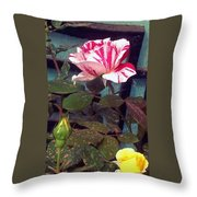 Striped Rose And Yellow 2 Throw Pillow