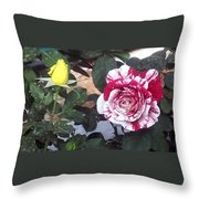 Striped Rose And Yellow Throw Pillow
