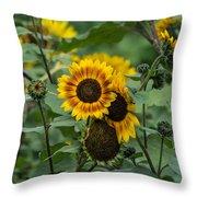 Striped Sunflower Throw Pillow