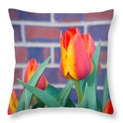 Striped Tulips Throw Pillow