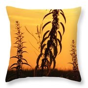 Strive Throw Pillow