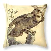 Strix Virginiana Owl Throw Pillow