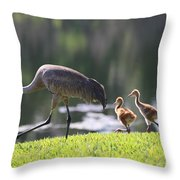 Stroll By The Pond Throw Pillow