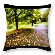 Stroll On An Autumn Lane Throw Pillow