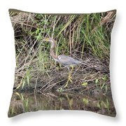 Strolling On The River Throw Pillow