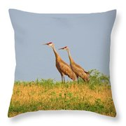 Strolling Sandhills Throw Pillow