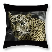 Strong Eyes Throw Pillow