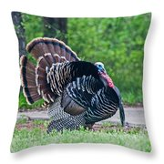 Struttin Throw Pillow