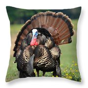 Strutting Gobbler Throw Pillow