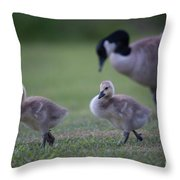 Strutting Our Stuff Throw Pillow