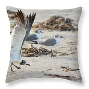 Strutting Seagull On The Beach Throw Pillow