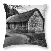 Stryd Lydan Barn Mono Throw Pillow