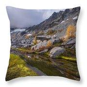 Stuart Range Meadows Reflection Throw Pillow
