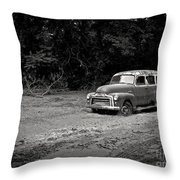 Stuck In The Mud Throw Pillow
