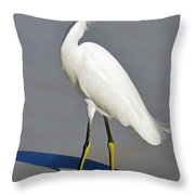 Stuck In The Sand Throw Pillow by Lori Tambakis