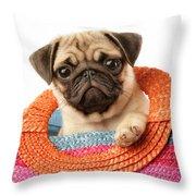 Stuck Pug Throw Pillow by Greg Cuddiford
