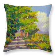 Study For Afternoon Shadows Throw Pillow