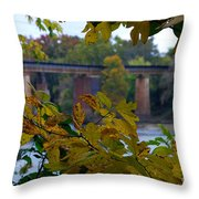 Study In Chlorophyll Throw Pillow