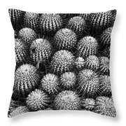 Study In Spines 2 Throw Pillow