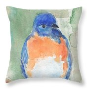 Study Of A Bluebird Throw Pillow