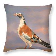 Study Of A Carrier Pigeon Throw Pillow