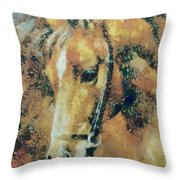Study Of A Horse's Head Throw Pillow