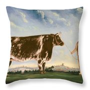 Study Of A Shorthorn Throw Pillow