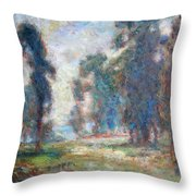 Study Of An Impressionist Master Throw Pillow by Quin Sweetman