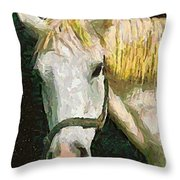 Study Of The Horse's Head Throw Pillow