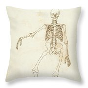 Study Of The Human Figure, Anterior View, From A Comparative Anatomical Exposition Of The Structure Throw Pillow