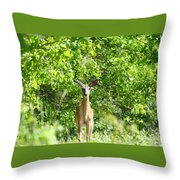 Stumble Upon  Throw Pillow
