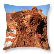 Stumped At Monument Valley Throw Pillow