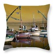 Stunning Fishing Port Throw Pillow