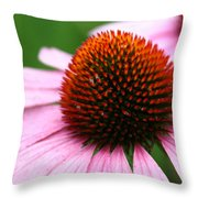 Stunning In Pink Throw Pillow