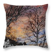 Stunning Painted Throw Pillow