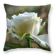 Stunning Rose Throw Pillow