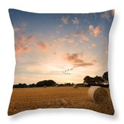 Stunning Summer Landscape Of Hay Bales In Field At Sunset Digital Painting Throw Pillow by Matthew Gibson