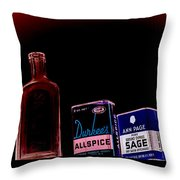 Sturgeon Point Lighthouse Medical Cabinet Throw Pillow
