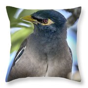 Styled Throw Pillow