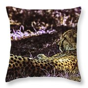 Styled Environment-the Modern Trendy Cheetah Throw Pillow